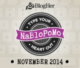 NaBloPoMo (11/2014) – Day 29: Bothered
